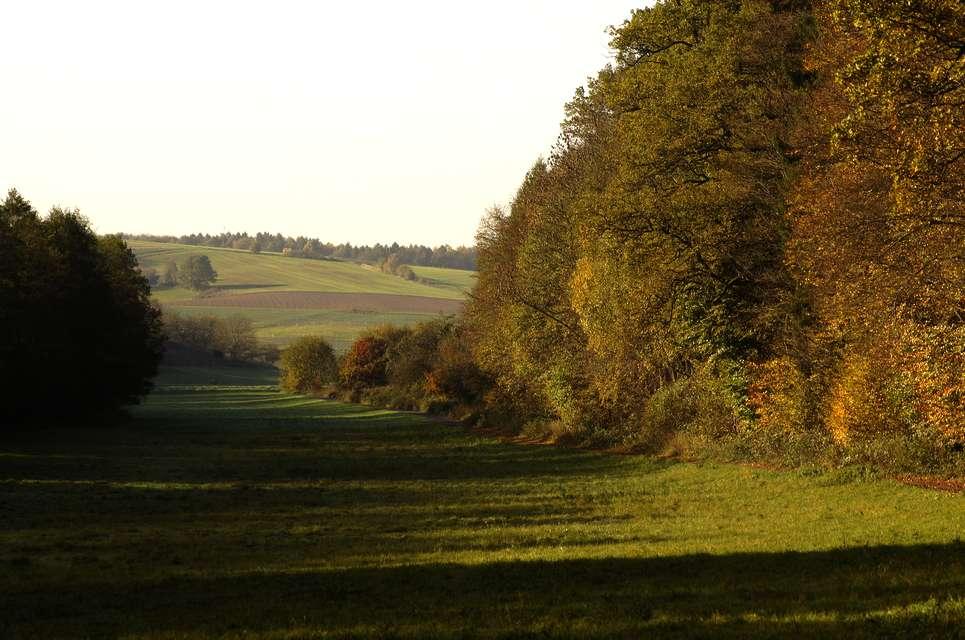 Herbst in Hessen