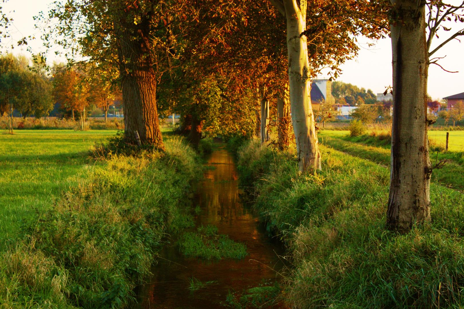 Herbst in Kirchhoven
