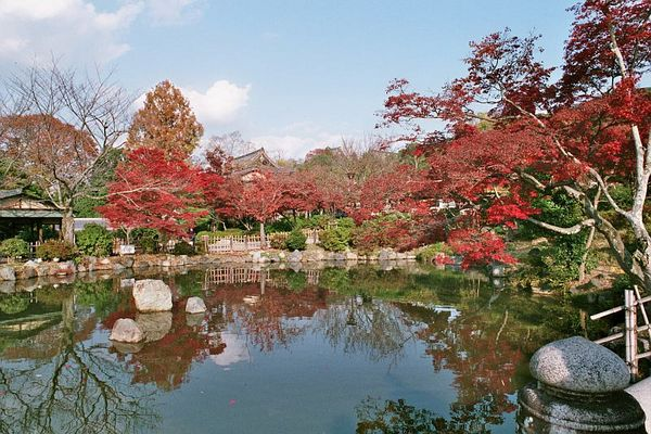 Herbst in Kyoto 2
