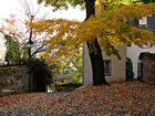 Herbst in Limburg
