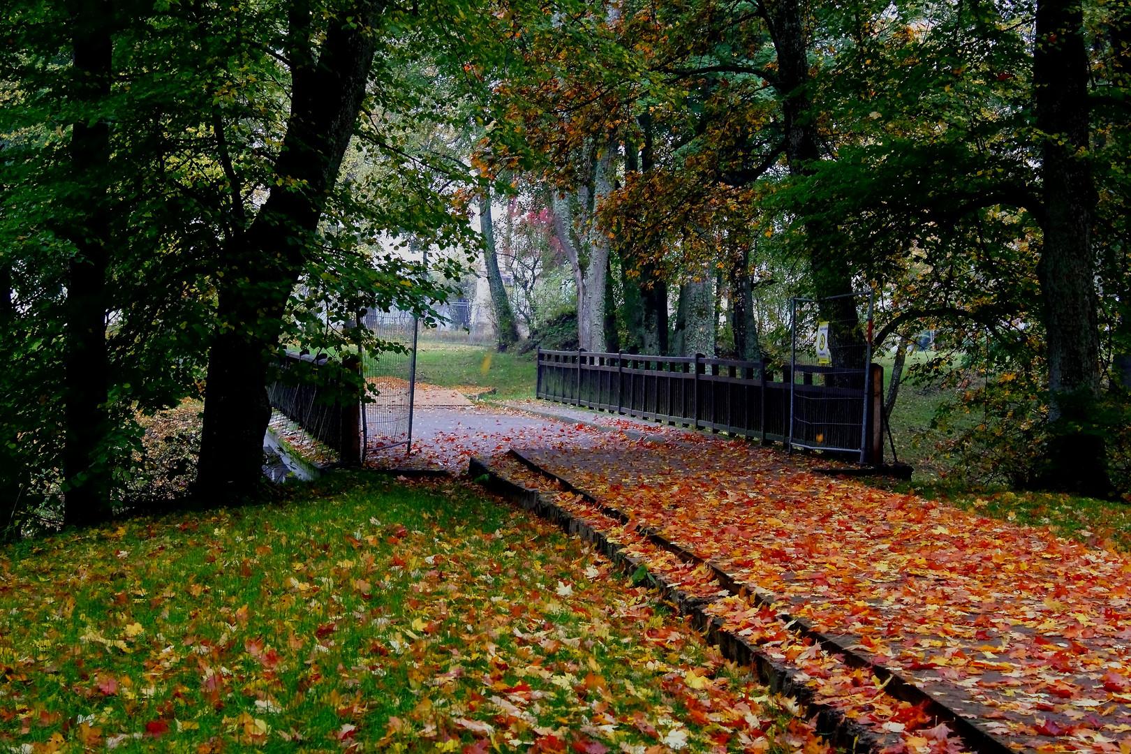 Herbst in Litauen