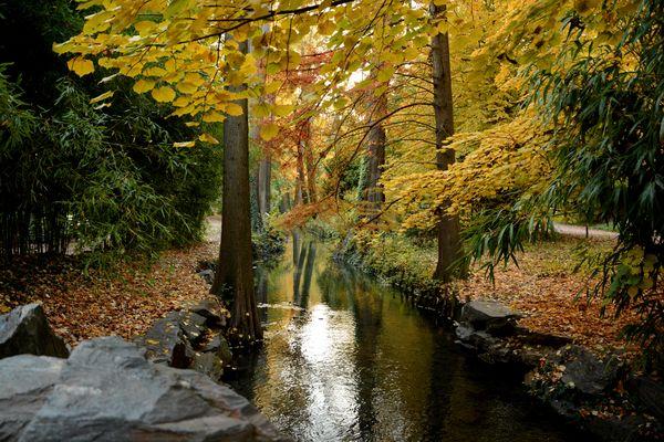 Herbst in Lyon
