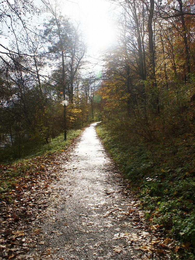 Herbst in MGN II