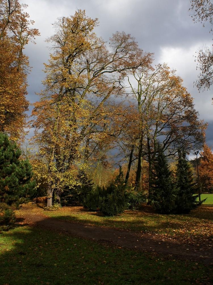 Herbst in MGN V