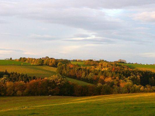 Herbst in MTL