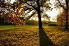 Herbst in München - Schloss Nymphenburg