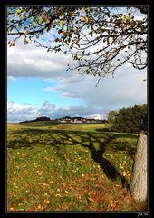 Herbst in Noeham