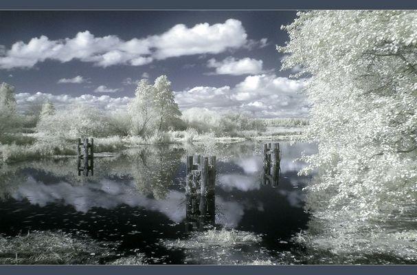 Herbst in Nordvorpommern. (IR)