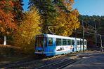 Herbst in Oslo