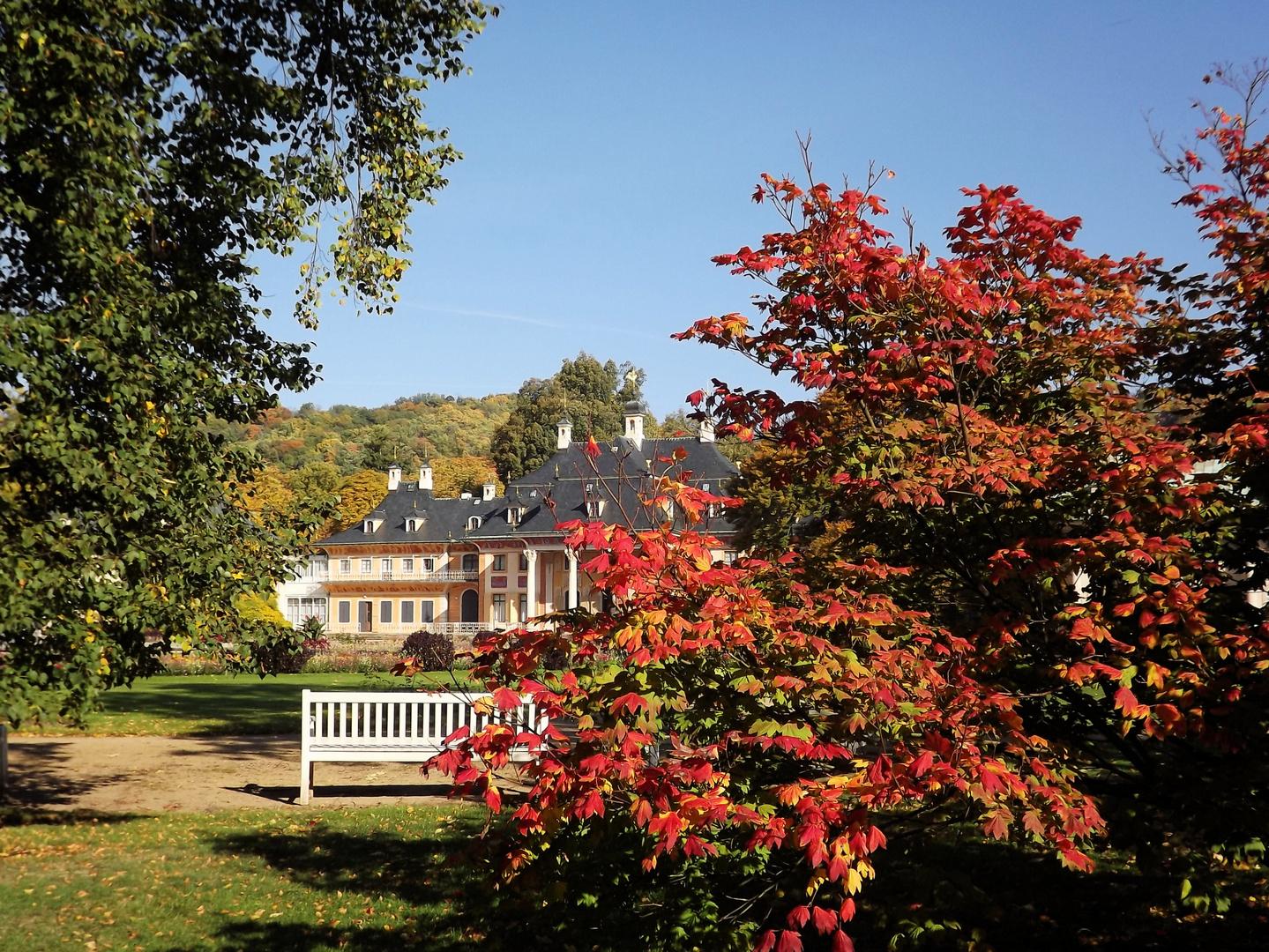 Herbst in Pillnitz