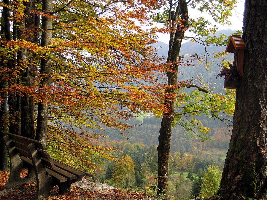 Herbst in Ramsau...
