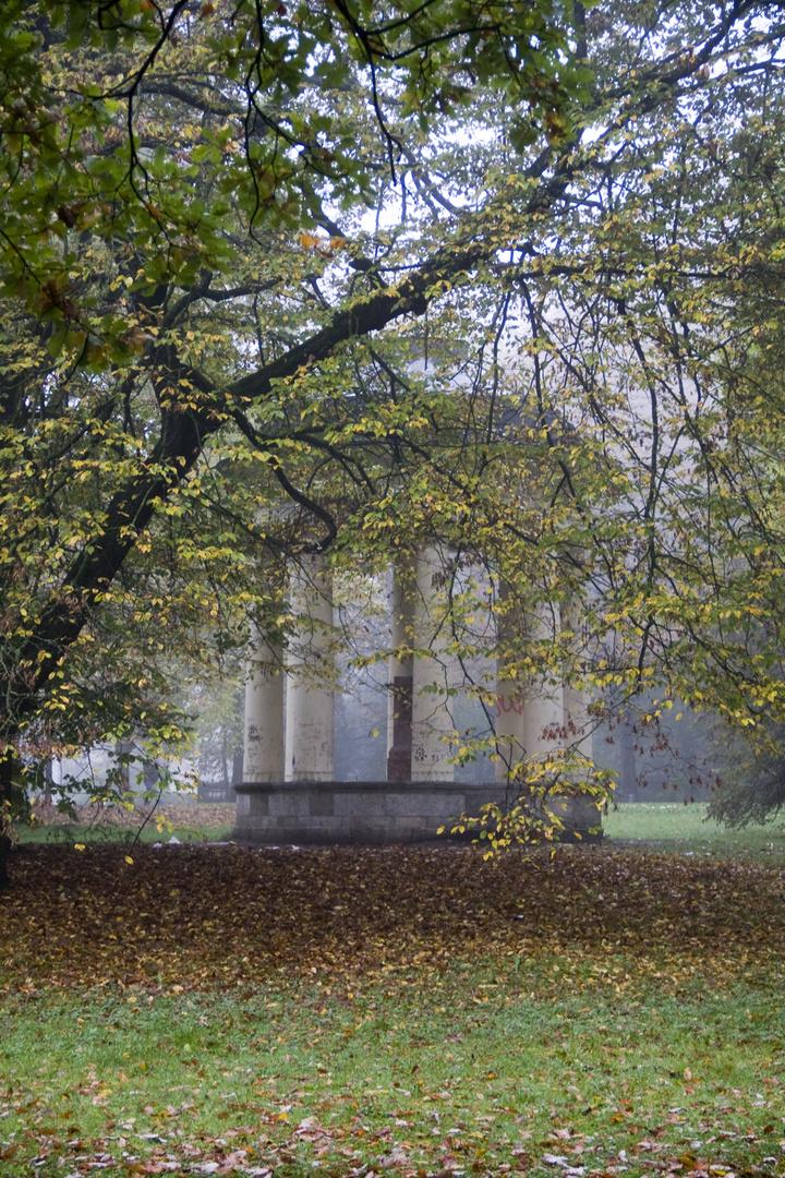 Herbst in Regensburg