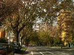 Herbst in Santiago