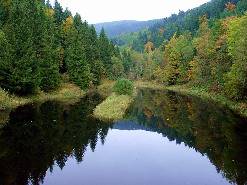 Herbst in Schwarzwald -1
