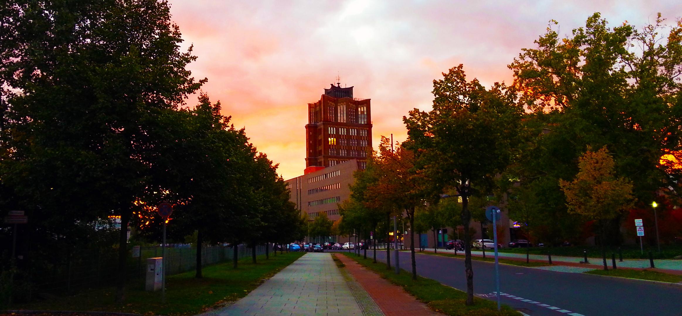 Herbst in Tegel