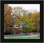 ...Herbst in unserem Dorf...