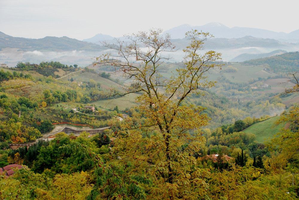Herbst in Urbino