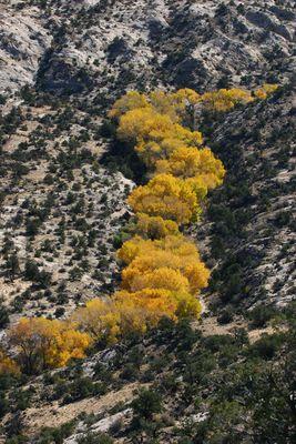 Herbst in Utah
