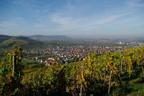 Herbst in Weinstadt