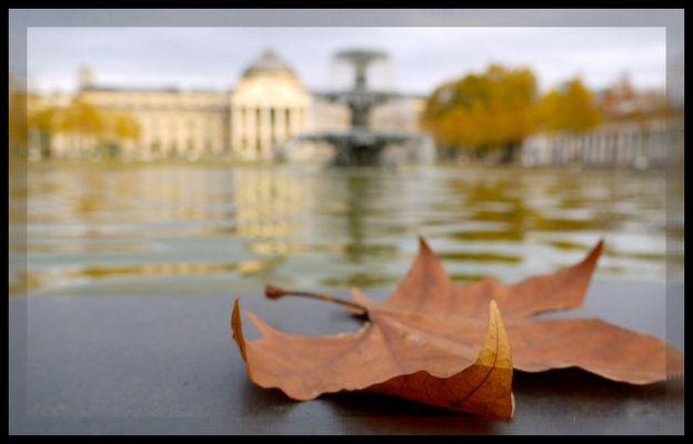 Herbst in Wiesbaden