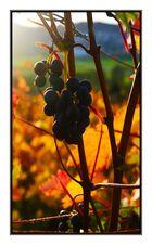 Herbst in Winnenden.....4