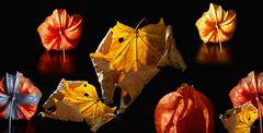 Herbst-Leuchten ....