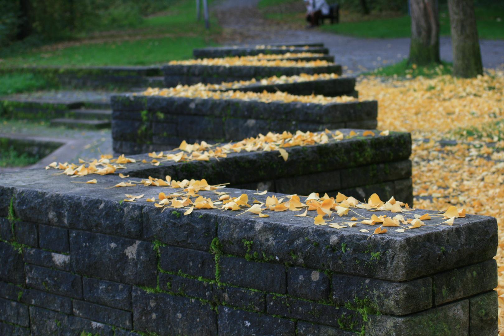 Herbst Mauer