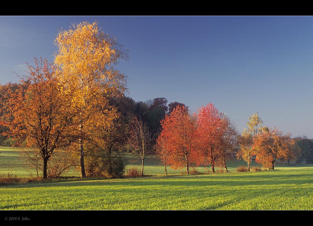 Herbst mit Vollgas