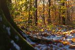 Herbst oder Winter???