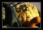 Herbst / Otono VI