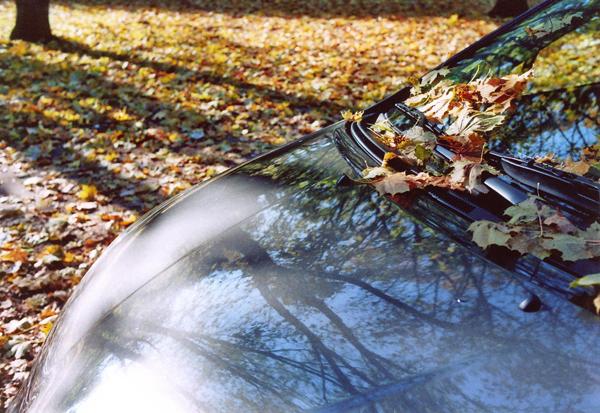 Herbst-Parkplatz