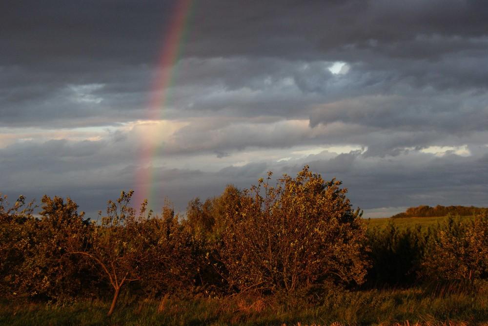 Herbst - Regenbogen