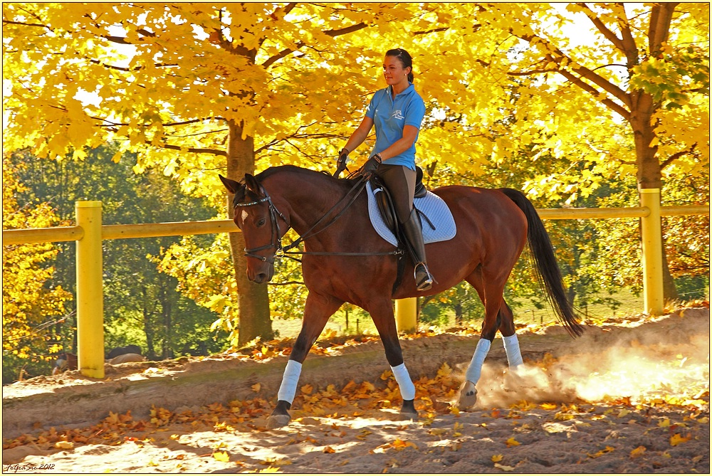 * Herbst-Reiten *