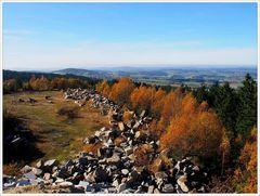 Herbst-Rückschau