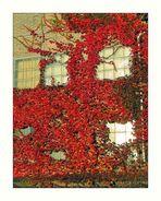 Herbst-Seite