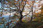 Herbst - so schön kann er sein