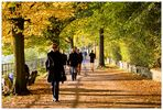 Herbst-Sonn[e]-Tag an der Elbe
