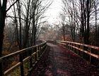 Herbst Spaziergang in Lünen