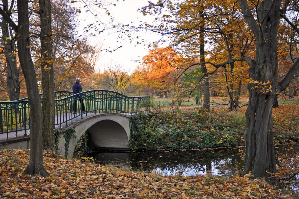 Herbst-Spaziergang N°5