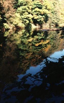 Herbst-Spiegel