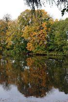 Herbst-Spiegelung