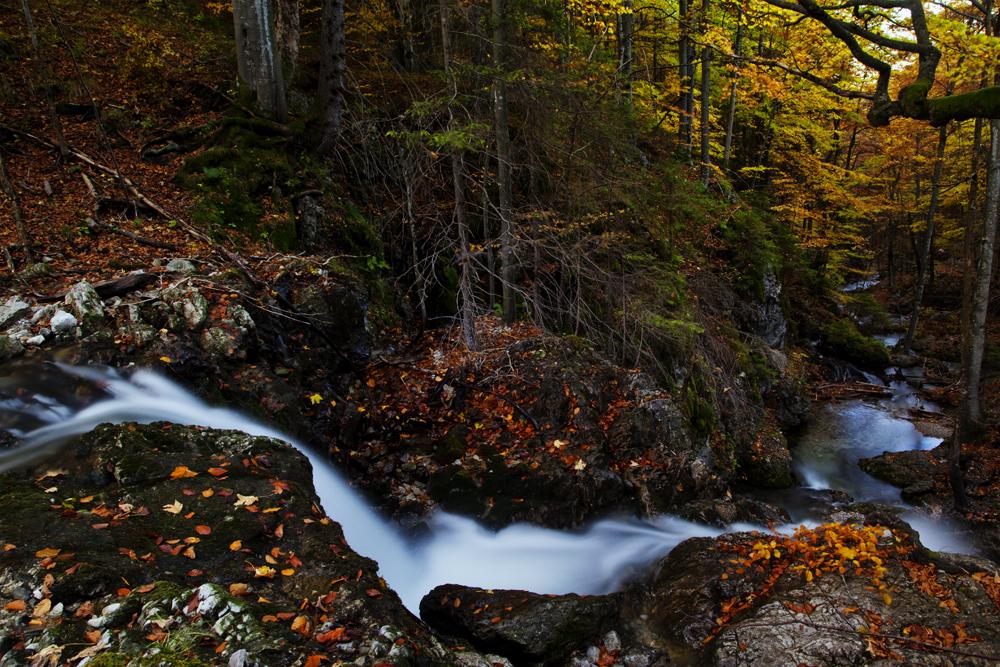 Herbst total am Wasserfall