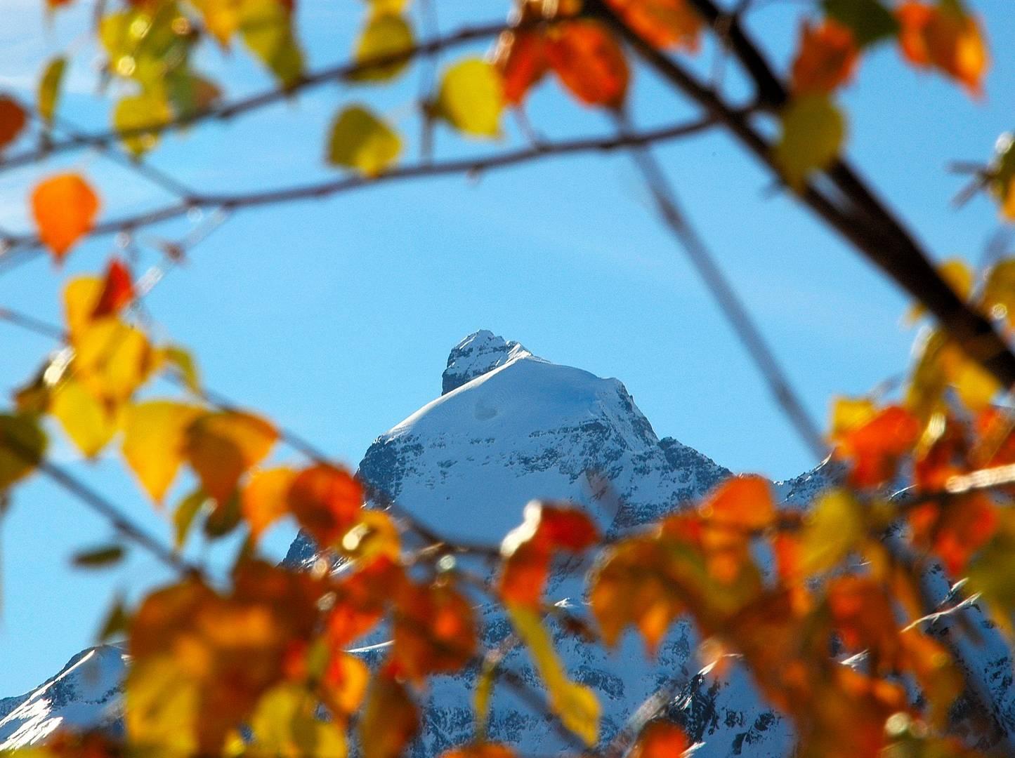 Herbst trifft Winter - Großes Wiesbachhorn