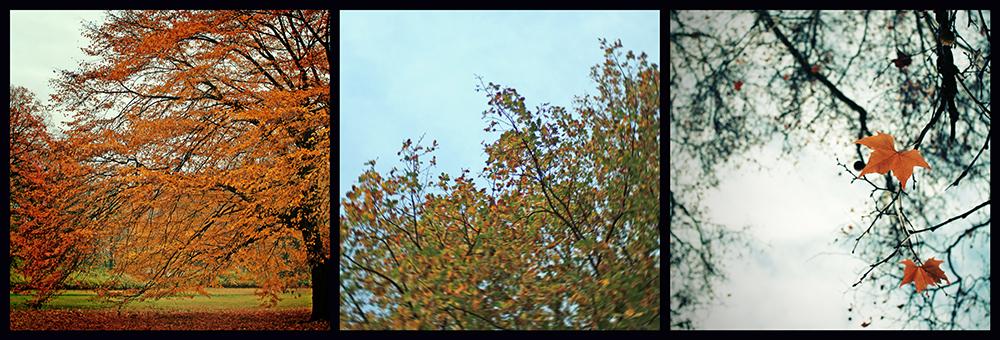 Herbst-Triptychon