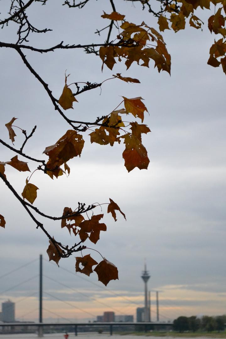 Herbst über Düsseldorf