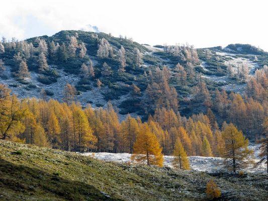 Herbst und Winter treffen aufeinander