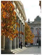 Herbst unter den Linden