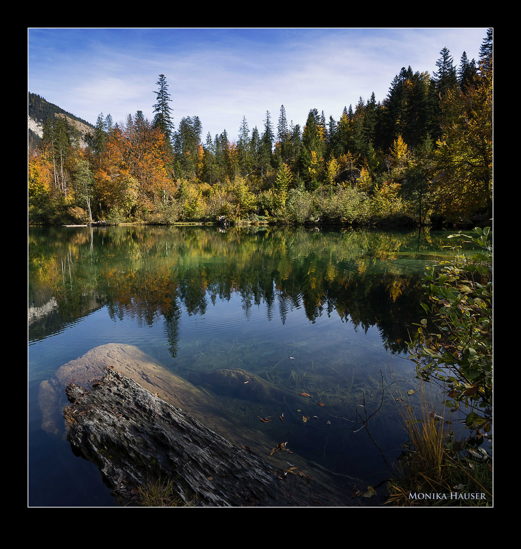 Herbst VI