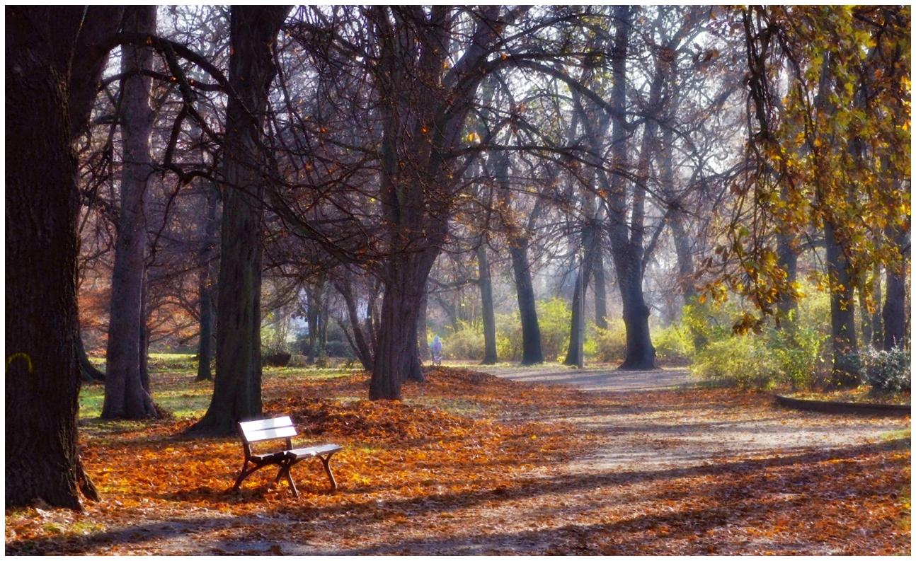 Herbst von seiner Schokolodenseite