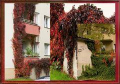 Herbst vor der Haustür